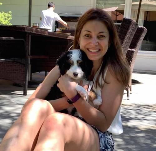 javin, raber, dog, good, breeder, usda, 33-a-0586, 33a0586, javin-raber, dog-breeder, flat, rock, il, illinios, flatrock, puppy, dog, kennels, mill, puppymill, usda, 5-star, aca, ica, registered, bernidoodles